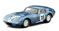 Shelby Daytona Coupe - Winner GT Class 12h Sebring 1964 n.10